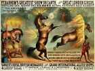 3441.Barnum Greatest Show Circus Horse on Fire POSTER.Home Room Office art decor