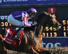 ST NICHOLAS ABBEY 05 (RIDDEN BY JOSEPH O'BRIEN) PHOTO PRINT