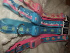 QUALITY QUICK RELEASE LARGE DOG COLLAR EASTSIDE USA PINK AND BLUE BEAUTIFUL