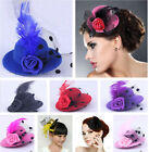 Feather Rose Mini Top Hat Dot Veil Fascinator Hair Clip Hairpin Fit Girl Costume