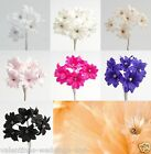 Quality Diamante Margherita Flower Spray 7 Colour Wedding Favor Decoration Craft