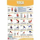 Productive Fitness Posters Yoga Asana Exercises (Laminate or Non-Laminated)