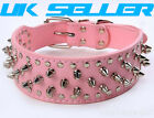 Pink leather studded spiked dog collar various sizes mastiff terrier staffy new