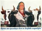 4178.Woman in between two cows in front of farm.POSTER.Home Office art decor