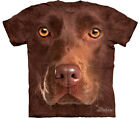 THE MOUNTAIN: Camiseta Niño Labrador Chocolate Talla S L M  XL