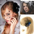Handmade Wedding Bridal Birdcage Face Veil Party Fascinator Feather With Comb