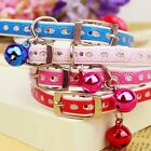 Beautiful Cute Puppy Cat Leash Collar With Bell PU Leather Pet Neck Strap Collar