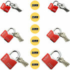 Iron Padlock Safety Security Shackle Chrome Plated 20mm-60mm with 3 Keys