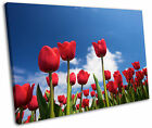 Spring Red Tulips Flowers Floral Framed Canvas Wall Art Picture Print