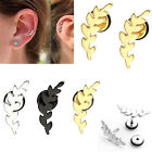 Pair 16G Leaf Steel Bars Ear Cartilage Helix Studs Womens Earrings Body Piercing