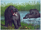 545.Hippopotamus Wall Art Decor POSTER.Graphics to decorate home office.Animal