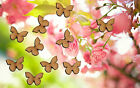 10 x Wooden Butterflies Laser Cut MDF Blank Small Medium Large Craft Decorations