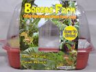 New Dunecraft Windowsill Greenhouse Indoor Kids Activity House Plant Kit 1 Each