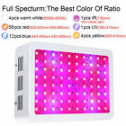 Bestva 600W 800W 1000W 1200W 1600W Double Chips LED Grow Light