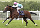 FRANKEL RIDDEN BY TOM QUEALLY (HORSE RACING) PHOTO PRINT 01