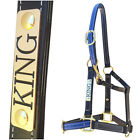 Horse Halter/Headstall - Black & Blue - With Nameplate