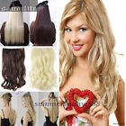 Long Natural Clip in 3/4 Full Head Clip in Hair Extensions Extentions Human HG8