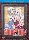 Fairy Tail: Part 9 (Blu-ray/DVD, 2014, 4-Disc Set)