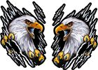 Set of 2 BALD EAGLE BIRD IN HOLE color vinyl bumper decals stickers (568)