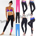 Lady Cropped Yoga Active Cloths Pant Gym Workout Running Legging Fitness Trouser