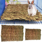 Small Animal Hamster Grass Chew Mat Breakers Toy Rabbit Rat Guinea Pig House pad