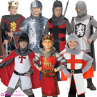 BOYS CHILDRENS KNIGHT KING MEDIEVAL HISTORICAL KING ARTHUR FANCY DRESS COSTUME
