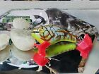 POE'S CUSTOM PAINTED WOODEN CEDAR( Collectible lures) EZS WEB