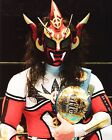 JUSHIN THUNDER LIGER 08 (WRESTLING) PHOTO PRINT