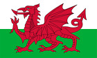 Wales Hand Waving Flag with pole - Welsh National Flag -  Free UK P&P