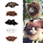 Pet Costume Lion Mane Wig for Cat Halloween Christmas Party Dress Up With Ear OW