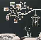 Photo Frame Tree Branch Wall Sticker WALL ART DECAL VINYL WALL ART STICKERS D67