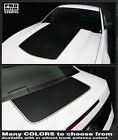 Ford Mustang 2010-2014 Hood and Trunk Stripes Decals (Choose Color)