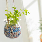 Mini Anion Hydroponic Plant Hanging Potted Plants-HOT
