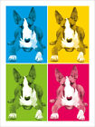 English Bull Terrier Poster Art Print (344)