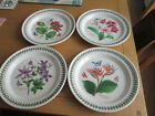 PORTMEIRION EXOTIC GARDEN BOTANIC GARDEN LARGE DINNER PLATES SELECTION  ALL NEW