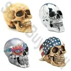 Skulls Assorted Styles and Sold Lot Quantity of 4