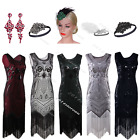 1920s Flapper Dress Sequin Charleston Fancy Gatsby 20s Party Tassel Deco Costume