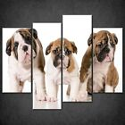 SORRY DOGS SPLIT CANVAS PRINT PICTURE WALL ART HOME DECORE FREE FAST DELIVERY