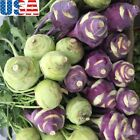 USA SELLER Kohlrabi Mix Purple/White seeds HEIRLOOM NON GMO