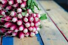 Radish French Breakfast Seed Select Size to 2LB  Easy Fast Grow Salad Greens #78