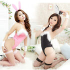 Costume Cosplay Sexy Fancy Bunny Rabbit Lingerie Full Set Dress Uniform Party QQ