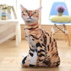 Soft 3D Simulation Stuffed 50cm Cat Toys