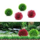 Marimo Ball Filter Live Aquarium Aquatic Plants Fish Shrimp Tank Pet  Decors.US