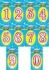 """2.5"""" Deluxe Number Happy Birthday Cake Candle Candles - 1 2 3 4 5 6 7 8 9 0"""
