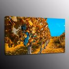 Giclee HD Canvas Print Painting Wall Art Argentina vineyards Picture Home Decor