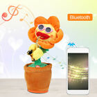 Bluetooth Singing And Dancing Sunflower Soft Plush Funny Cre