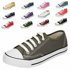 CHILDRENS SPOT ON LACE UP BASEBALL CANVAS SHOES / PUMPS / TRAINERS X0001 2 COLOU