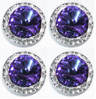 HELIOTROPE HORSE SHOW NUMBER MAGNETS SET OF 4 MADE WITH SWAROVSKI CRYSTALS