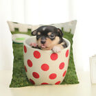 Best Selling Bago Cotton Pillow Case Office Home Cushion Cover Wholesale