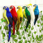 Garden Simulation Bird Props Creative Feather Parrot Living Room Home Decor USA